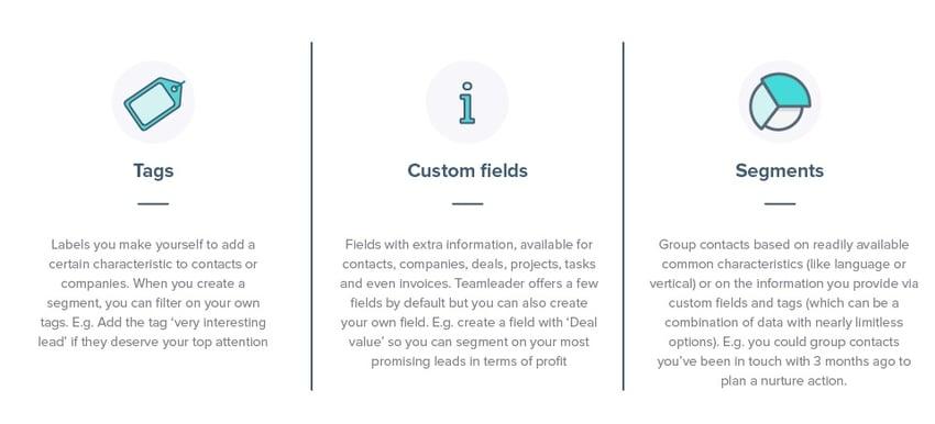 lead qualification tag custom field segment